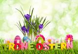 Frohe Ostern mit Krokus & Bokeh grün