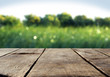 Wood table and green grass blurred background - 100682850