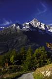 Das Bietschhorn bei Visperterminen im Wallis, Schweiz