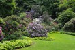 Obrazy na płótnie, fototapety, zdjęcia, fotoobrazy drukowane : Garden.