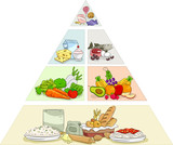 Food Pyramid Examples