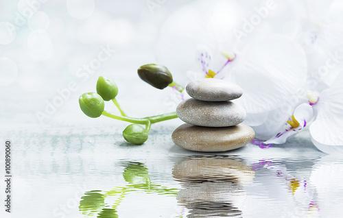 zdroju-wciaz-zycie-z-kamieniami-orchidea-na-wody-reflec