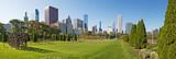Chicago, Illinois: la scultura Hedgerow dell'artista Lucy Slivinski e lo skyline della città visti da Grant Park, 23 settembre 2014