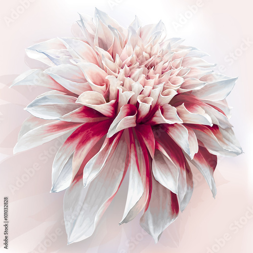 Watercolor Dahlia - 101032828