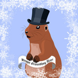 Groundhog day greeting card with cute marmot in black hat on winter background.