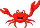 funny cartoon crab - 101076064