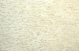 sfondo di intonaco effetto granuloso