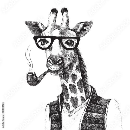 Hand drawn Illustration of giraffe hipster - 101110693