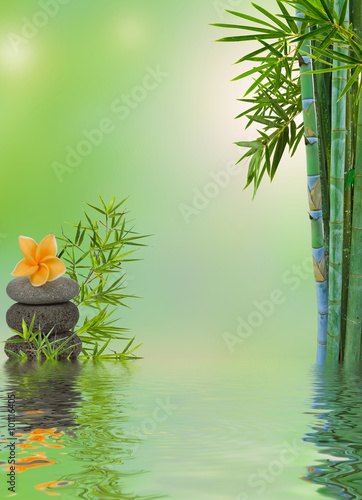 Fototapeta composition aquatique relaxation massage zen