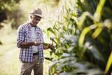 Farmer in the field