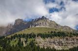 Montagna, collina, bosco, foresta