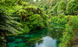 Fototapety Blue Spring which is located at Te Waihou Walkway,Hamilton New Zealand. It internationally acclaimed supplies around 70% of New Zealand's bottled water because of the pure water.