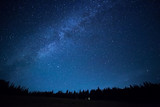 Blue dark night sky with many stars above field of trees. Milkyw