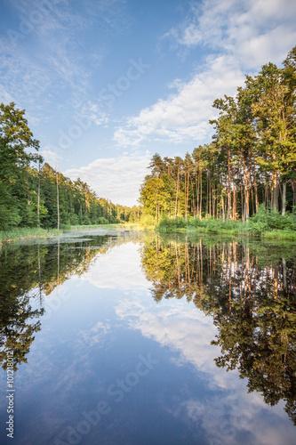 Jezioro w lesie, odbicie drzew w tafli wody