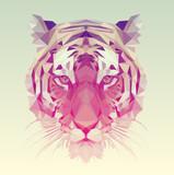 Polygonal Tiger Graphic Design.