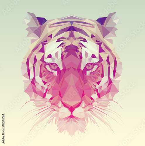 Polygonal Tiger Graphic Design. плакат