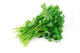 fresh cilantro coriander isolated on white background - 101261047
