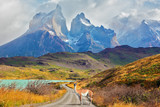 Fototapety Majestic  day in Patagonia