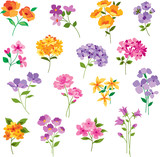 Fototapety hand drawn vector flowers
