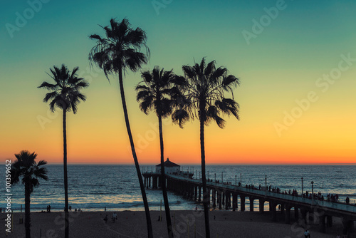 Plakat Palm trees at Manhattan Beach