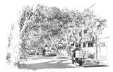 Fototapety sketch of street covered with arched tree branches,French Concession,Shanghai