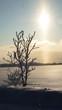 Obrazy na płótnie, fototapety, zdjęcia, fotoobrazy drukowane : Fairytale winter 2