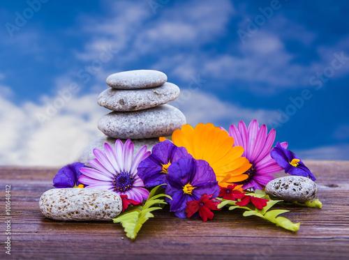 Zdjęcia na płótnie, fototapety, obrazy : flores sobre una madera y con el cielo de fondo