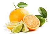 Fototapety Fresh citrus fruits