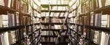 Fototapety Library bookshelves background