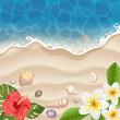 Obrazy na płótnie, fototapety, zdjęcia, fotoobrazy drukowane : Tropical beach with frangipani and hibiscus flowers