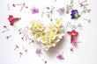 Obrazy na płótnie, fototapety, zdjęcia, fotoobrazy drukowane : Summers floral heart with flowers, floral heart with Frangipani on white backgrounds, light soft tone and blur, valentines day card concept.