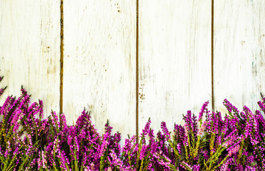 Purple heather flowers on rustic wooden planks. Flowers rustic background.