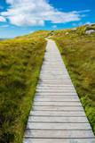 Fototapety Schmaler Pfad auf einen Hügel