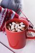mug with hot chocolate