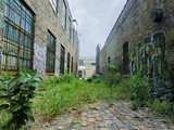 Urban alley with overgrown weeds and graffiti - landscape photo © jryanc10