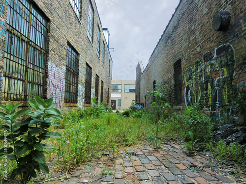 Urban alley with overgrown weeds and graffiti - landscape photo Poster