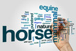 Obrazy na płótnie, fototapety, zdjęcia, fotoobrazy drukowane : Horse word cloud concept