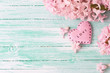 Background  with fresh flowers hyacinths  and decorative pink  h