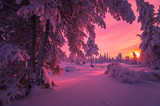 Winter Evening Landscape with forest, cliffs, sunset and cloudy sky