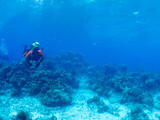 Cuba, scubadivers under-sea