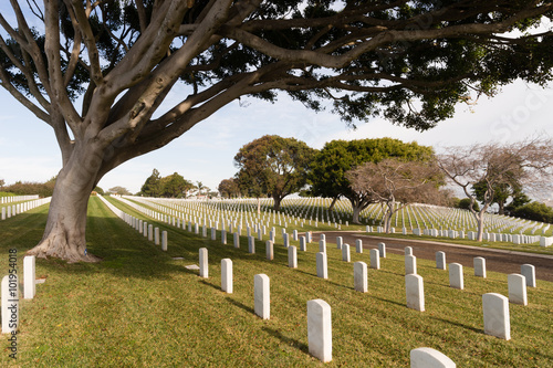 Fort Rosecrans National Military Cemetery Cabrillo National Monument Poster