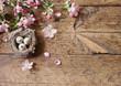 Obrazy na płótnie, fototapety, zdjęcia, fotoobrazy drukowane : egg in nest with pink flowers