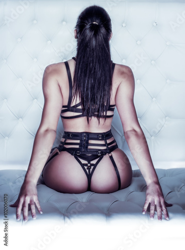 Rear View of Woman in Bondage Lingerie Poster
