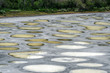 Spotted Lake close view in Okanagan valley