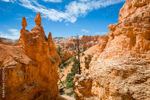 Poster Oranje eclat Views of the hiking trails in Bryce Canyon National Park, Utah