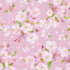 Cherry Blossom Spring Background - Seamless Pattern - in vector