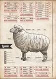 Sheep - Kitchen Cheat Sheet