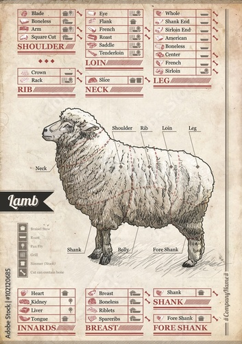 Fotobehang Vintage Poster Sheep - Kitchen Cheat Sheet