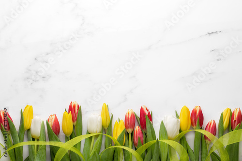Tulips with ribbon on white marble