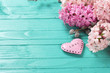 Background with fresh pink hyacinths  and  decorative heart